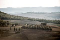 TuscanyUmbria-1041