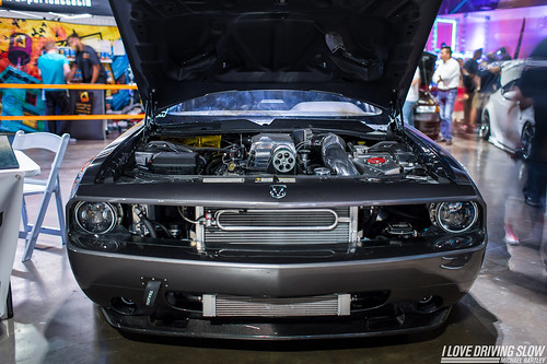 "ILDS HIN Tampa 2016-29 • <a style=""font-size:0.8em;"" href=""http://www.flickr.com/photos/63968896@N02/31270160531/"" target=""_blank"">View on Flickr</a>"