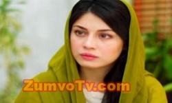 Main Mehru Hoon Episode 90 Full by Ary Digital Aired on 29th November 2016