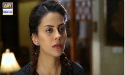 Saheliyan Episode 74 Full by Ary Digital Aired on 23rd November 2016