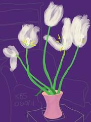 060711 White Tulips