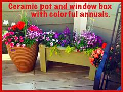 Patio Pots - - Lafayette Florist & Greenhouses in Lafayette, Colo.