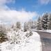 Neve no Parque Natural do Alvão-6