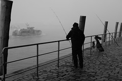 Foggy Morning at St. Pauli Fischmarkt