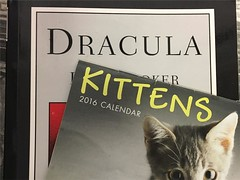 Dracula Kittens