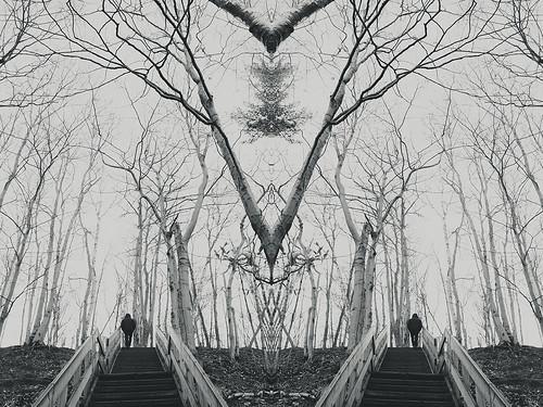 Surrealismo - de Nerea García