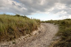 "Ameland • <a style=""font-size:0.8em;"" href=""http://www.flickr.com/photos/139847504@N02/30019810262/"" target=""_blank"">View on Flickr</a>"