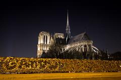 Vue nocturne de Notre-Dame de Paris