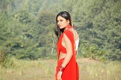 South Actress Deepika Das Hot in Red Sari Photos Set-5 (18)