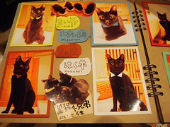 "Black cat cafe 3 • <a style=""font-size:0.8em;"" href=""http://www.flickr.com/photos/66379360@N02/10351938886/"" target=""_blank"">View on Flickr</a>"