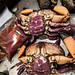 "King Crab • <a style=""font-size:0.8em;"" href=""http://www.flickr.com/photos/18785454@N00/9490324766/"" target=""_blank"">View on Flickr</a>"
