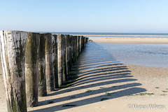 "Ameland • <a style=""font-size:0.8em;"" href=""http://www.flickr.com/photos/139061502@N06/30468320602/"" target=""_blank"">View on Flickr</a>"