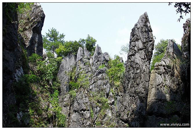 [2013福建]永安.鱗隱石林~奇石構成的景像.奇景值得一看 @VIVIYU小世界