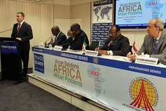 African_Solutions_to_African_Problems_Panel_2_2