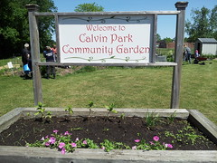 """Calvin Park Community Garden 12 • <a style=""""font-size:0.8em;"""" href=""""http://www.flickr.com/photos/61175668@N08/18883525656/"""" target=""""_blank"""">View on Flickr</a>"""