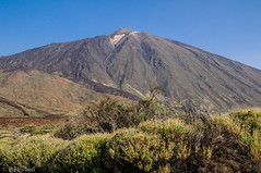 """am Teide • <a style=""""font-size:0.8em;"""" href=""""http://www.flickr.com/photos/58574596@N06/15146225656/"""" target=""""_blank"""">View on Flickr</a>"""