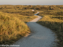 """Dunes • <a style=""""font-size:0.8em;"""" href=""""http://www.flickr.com/photos/140173716@N03/30219143770/"""" target=""""_blank"""">View on Flickr</a>"""