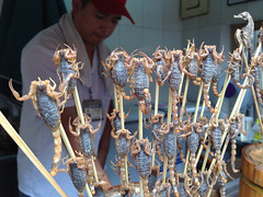 Live Scorpions and Seahorses wriggling on a Stick at Wangfujing Night Market, Beijing, China
