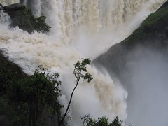 World Famous Jog Falls Photography By CHINMAYA M.RAO Set-1 (100)