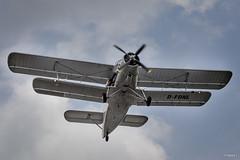 Fly In Koksijde 2014 - Antonov An-2