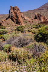 """am Teide • <a style=""""font-size:0.8em;"""" href=""""http://www.flickr.com/photos/58574596@N06/15146217056/"""" target=""""_blank"""">View on Flickr</a>"""