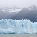 Perito Moreno-9
