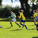 14s Trim Celtic v Skyrne Tara October 15, 2016 04