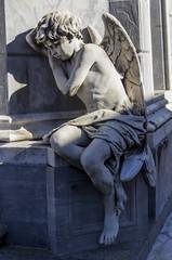 Tired infant angel