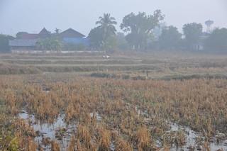 Samphan Bok