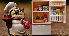 """Der Kühlschrank. Die Kühlschränke. Eine Eulenfigur steht neben einem Spielzeug-Kühlschrank. • <a style=""""font-size:0.8em;"""" href=""""http://www.flickr.com/photos/42554185@N00/31477587616/"""" target=""""_blank"""">View on Flickr</a>"""