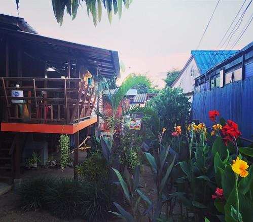 #Garden  @ #Pai #Thailand  #thailoup #traveloup