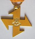 Crucea Regina Maria, clasa II