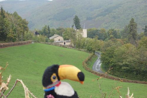Pelico admire notamment le château de Thyl