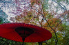 Photo:Arima Onsen050 By