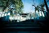 Photo:Shrine Gate By