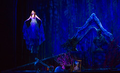 Alison Woods as Ariel in Disney's The Little Mermaid presented by Broadway Sacramento at the Community Center Theater Feb. 2-7, 2016. Photo by Bruce Bennett, courtesy of Theatre Under The Stars.