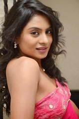 South Actress Deepika Das Hot in Pink Dress- Photos Set-6 (27)