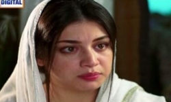 Main Mehru Hoon Episode 87 Full by Ary Digital Aired on 23rd November 2016