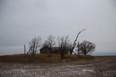 KansasThanksgiving-2528.jpg