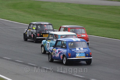Mighty Minis at Donington Park, October 2015
