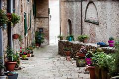 TuscanyUmbria-1014