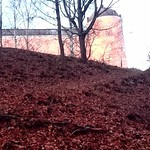 """Soon it will be winter. Nature is preparing itself. #nahöst #autumn #höst #Uppsala #slott #castle #awesomepicture #visituppsala #picoftheday #photooftheday #filter <a style=""""margin-left:10px; font-size:0.8em;"""" href=""""http://www.flickr.com/photos/131645797@N05/23184171301/"""" target=""""_blank"""">@flickr</a>"""