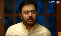 Ehsaas Episode 6 Full by Urdu1 Aired on 22nd November 2016