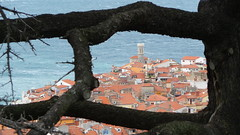 """Piran, Slovenia • <a style=""""font-size:0.8em;"""" href=""""http://www.flickr.com/photos/39052554@N00/21928004270/"""" target=""""_blank"""">View on Flickr</a>"""