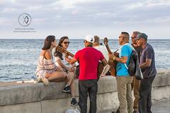 Musicians seranade tourists in Havana.