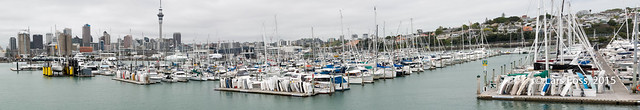 Part of Westhaven Marina