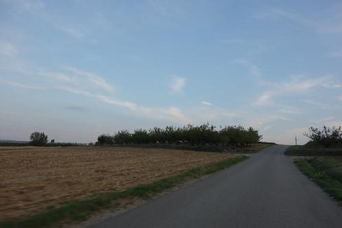 Les paysages changent à nouveau : Pelico voit de nombreux vergers (pommes notamment)
