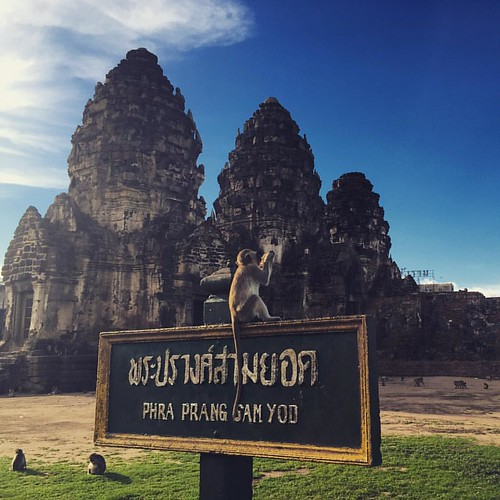 #PhraPrangSamYod  @ #Lopburi #Thailand #monkeytown #Affenstadt #thailoup #traveloup