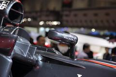 TMS2015_McLaren_013