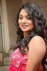 South Actress Deepika Das Hot in Pink Dress- Photos Set-6 (17)